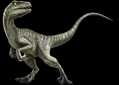 Most Reliable Plumbers Las Vegas Has Experienced Raptor