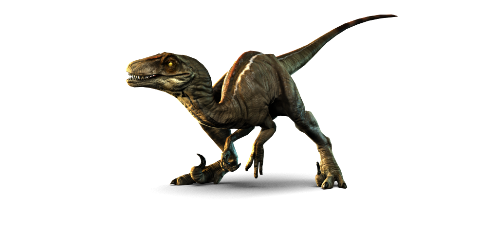 Dino Iannucci | Raptor Plumbing | 702-257-7511